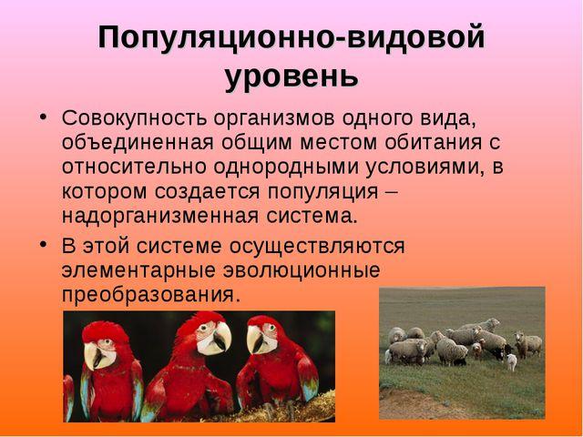 Популяционно-видовой уровень Совокупность организмов одного вида, объединенна...