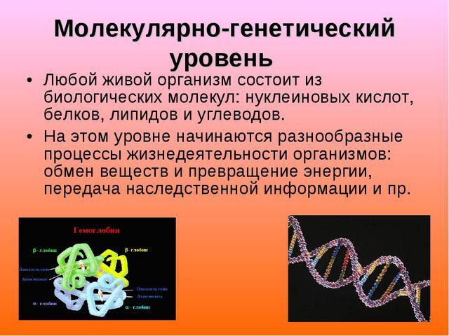 Молекулярно-генетический уровень Любой живой организм состоит из биологически...