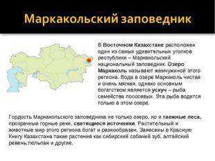 В Восточном Казахстане расположен один из самых удивительных уголков республи