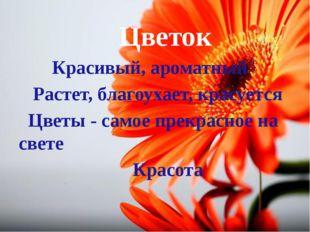 Цветок Красивый, ароматный Растет, благоухает, красуется Цветы - самое прекр