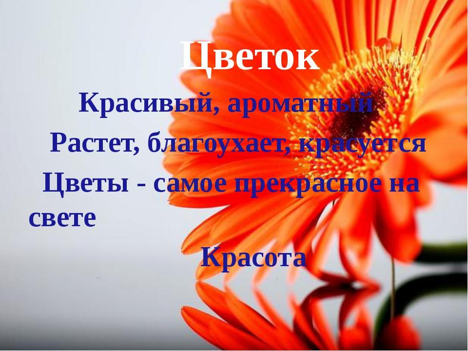 Цветок Красивый, ароматный Растет, благоухает, красуется Цветы - самое прекр...