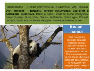 Разнообразен и богат растительный и животный мир Евразии. Этот материк – роди