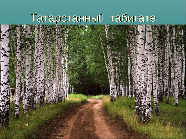 Татарстанның табигате