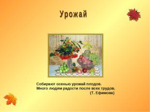 Собирают осенью урожай плодов. Много людям радости после всех трудов. (Т. Ефи