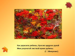 Меж узорчатой листвой яркие рубины. (Г. Эйнерлинг) Как украсила рябины, броси