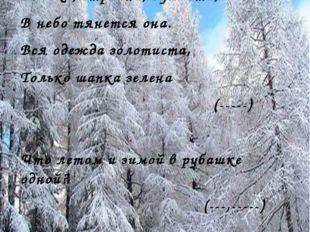 Загадки о хвойных деревьях Высока, стройна, душиста, В небо тянется она. Вся