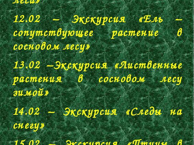 11.02 – Экскурсия «Сосна – преобладающее растение нашего леса» 12.02 – Экскур...