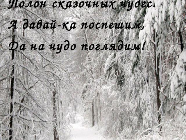 Говорят, зимою лес Полон сказочных чудес. А давай-ка поспешим, Да на чудо по...