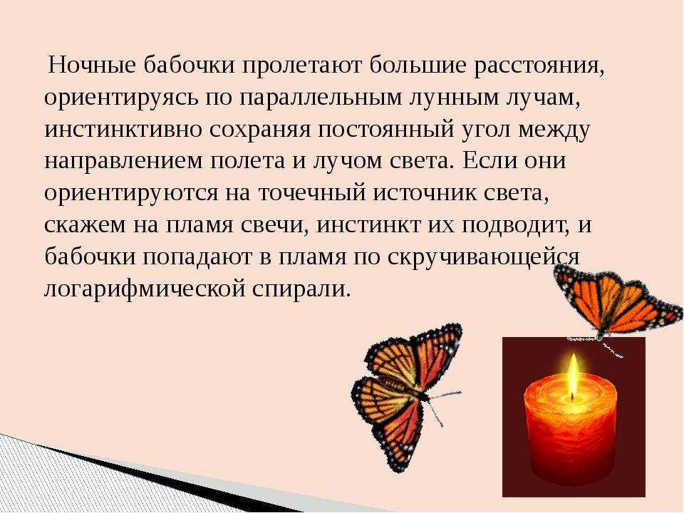 Ночные бабочки пролетают большие расстояния, ориентируясь по параллельным лу...