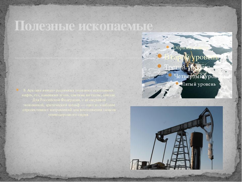 В Арктике немало различных полезных ископаемых: нефть, газ, каменный уголь,...