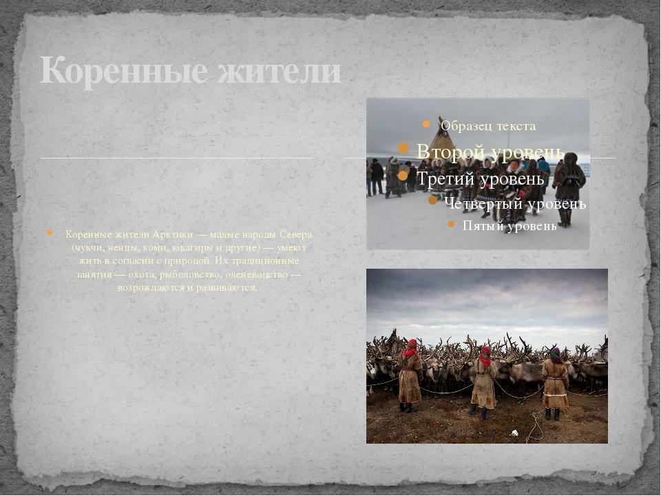 Коренные жители Арктики — малые народы Севера (чукчи, ненцы, коми, юкагиры и...