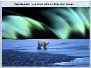 Удивительное природное явление Северное сияние
