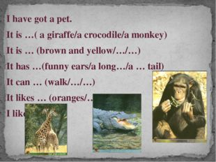 I have got a pet. It is …( a giraffe/a crocodile/a monkey) It is … (brown and