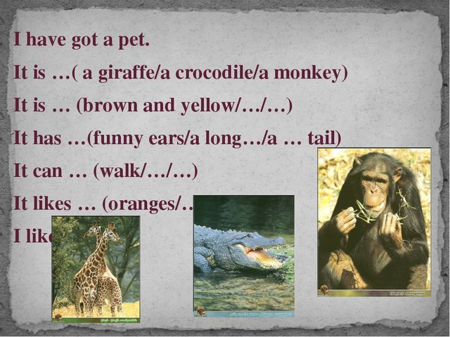 I have got a pet. It is …( a giraffe/a crocodile/a monkey) It is … (brown and...