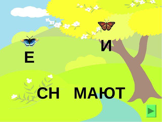 СН МАЮТ