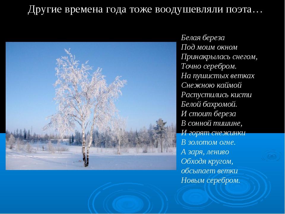 Другие времена года тоже воодушевляли поэта… Белая береза Под моим окном При...