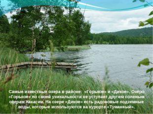 Самые известные озера в районе: «Горькое» и «Дикое». Озеро «Горькое» по своей