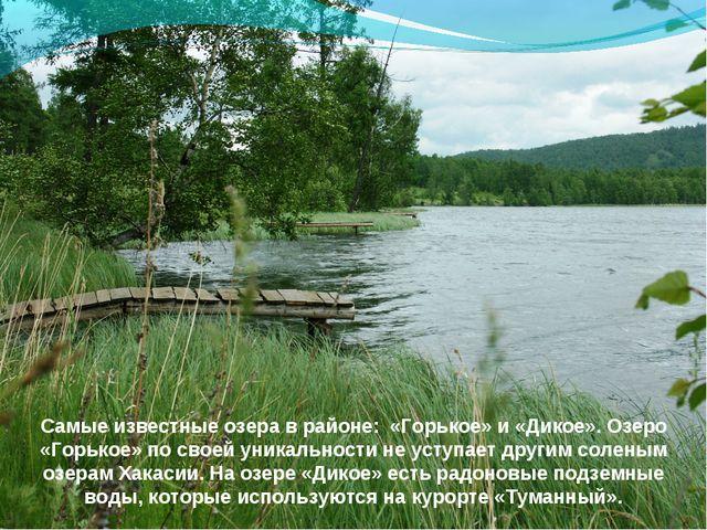 Самые известные озера в районе: «Горькое» и «Дикое». Озеро «Горькое» по своей...