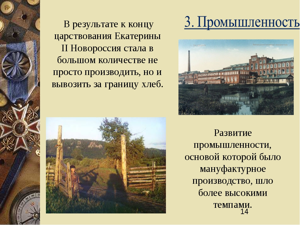 В результате к концу царствования Екатерины II Новороссия стала в большом ко...