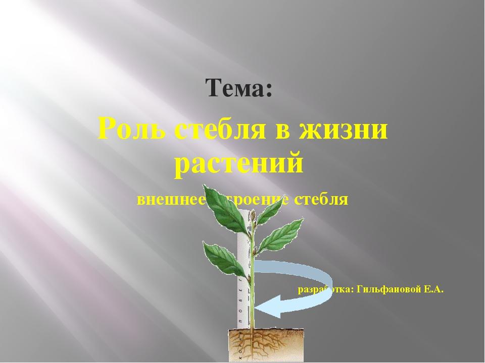 Тема: Роль стебля в жизни растений внешнее строение стебля разработка: Гильф...