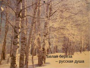 Белая береза – русская душа