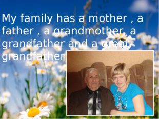 My family has a mother , a father , a grandmother, a grandfather and a great