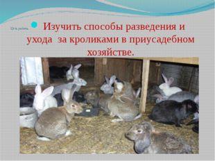 Цель работы: Изучить способы разведения и уходаза кроликами в приусадебном