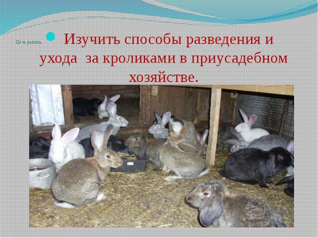 Цель работы: Изучить способы разведения и уходаза кроликами в приусадебном...