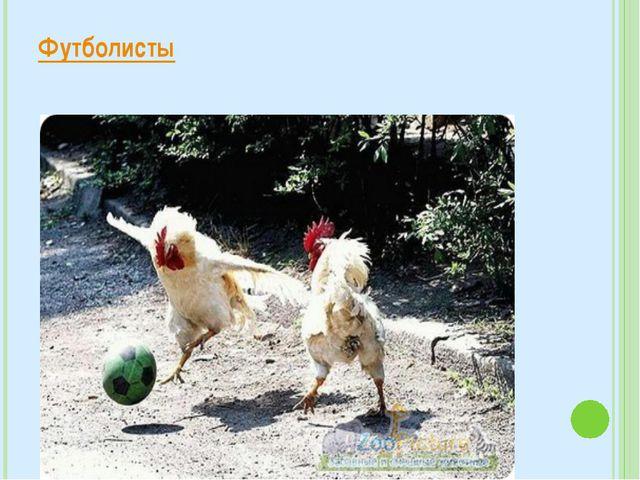Футболисты