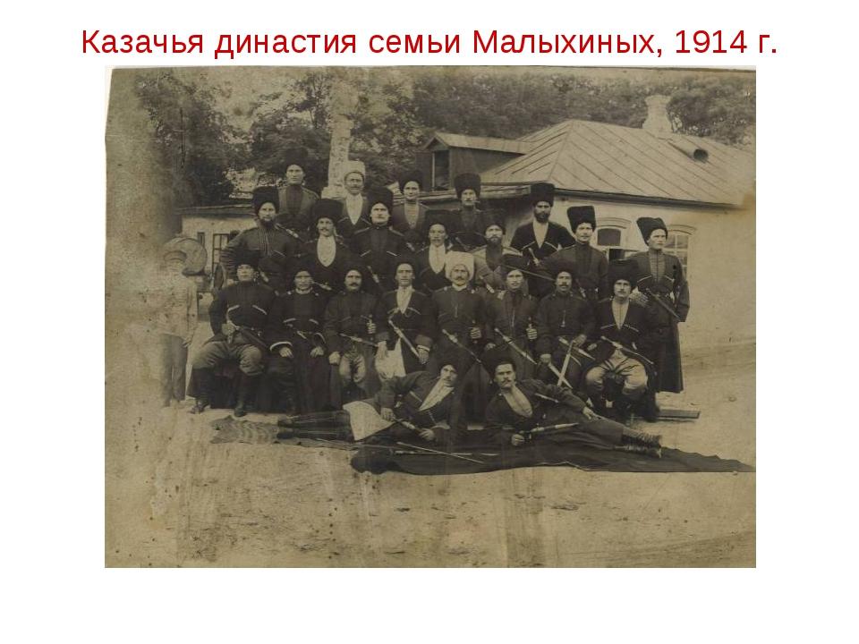 Казачья династия семьи Малыхиных, 1914 г.