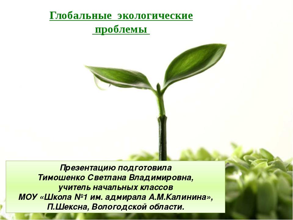 Глобальные экологические проблемы Презентацию подготовила Тимошенко Светлана...