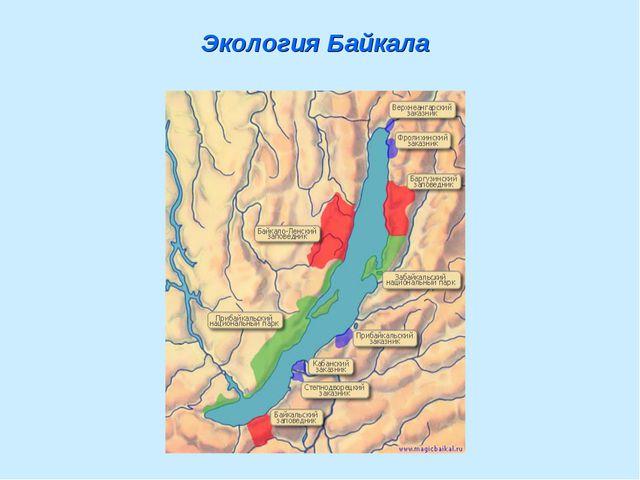 Экология Байкала