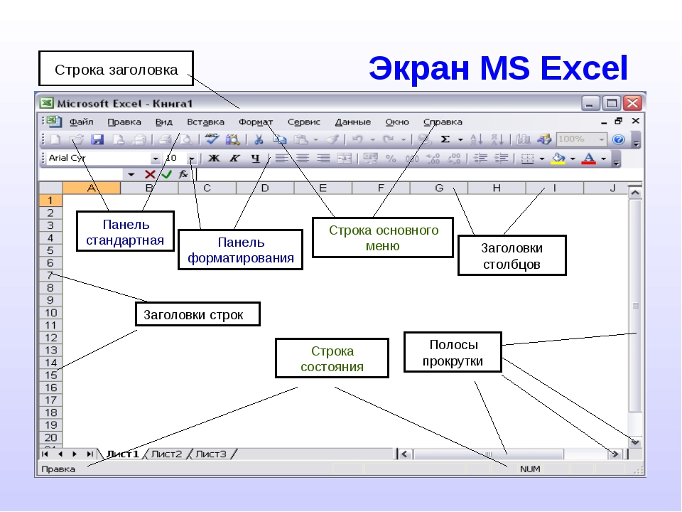 Экран MS Excel
