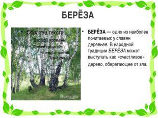 БЕРЁЗА БЕРЁЗА — одно из наиболее почитаемых у славян деревьев. В народной тра