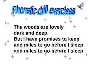 The woods are lovely, dark and deep. But I have promises to keep and miles t