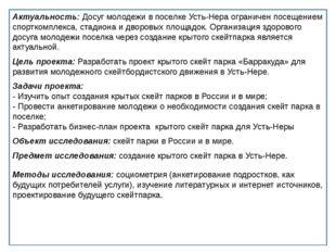Актуальность: Досуг молодежи в поселке Усть-Нера ограничен посещением спортк