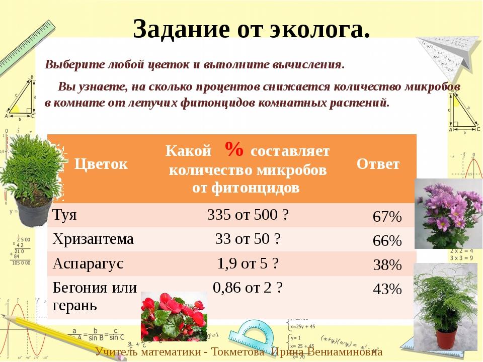 Выберите любой цветок и выполните вычисления. Вы узнаете, на сколько проценто...