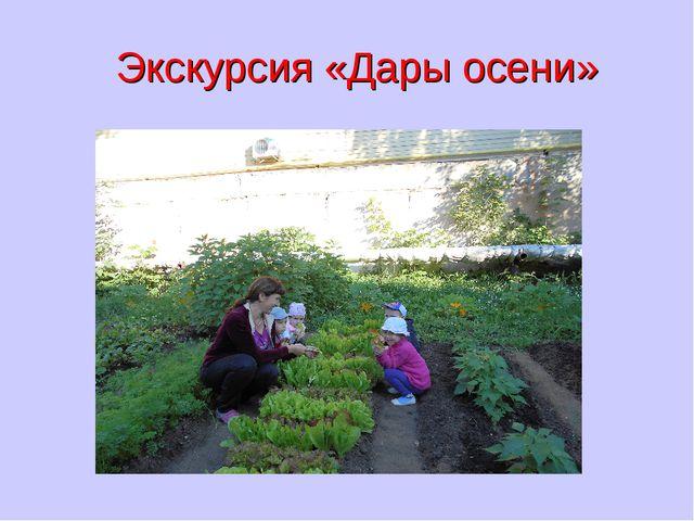 Экскурсия «Дары осени»