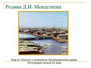 Вид на Тобольск с колокольни Преображенской церкви. Фотография начала XX века
