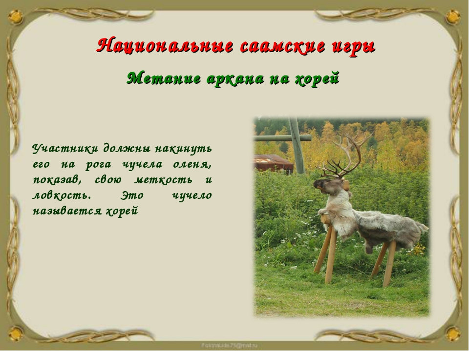 Участники должны накинуть его на рога чучела оленя, показав, свою меткость и...