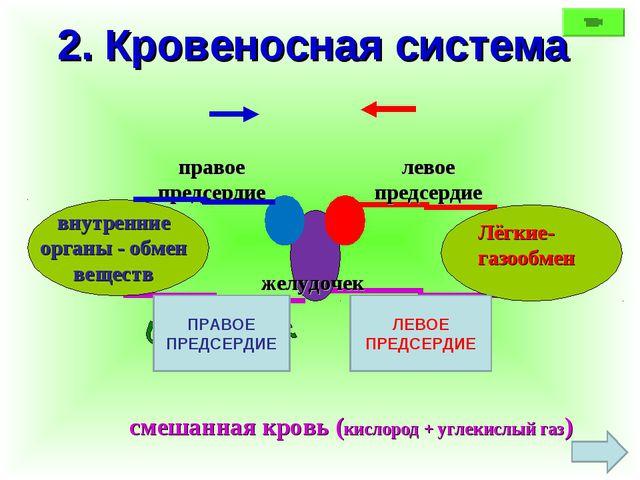 2. Кровеносная система Лёгкие- газообмен внутренние органы - обмен веществ же...