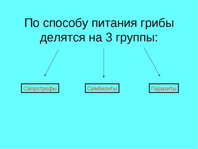 По способу питания грибы делятся на 3 группы: Сапротрофы Симбионты Паразиты