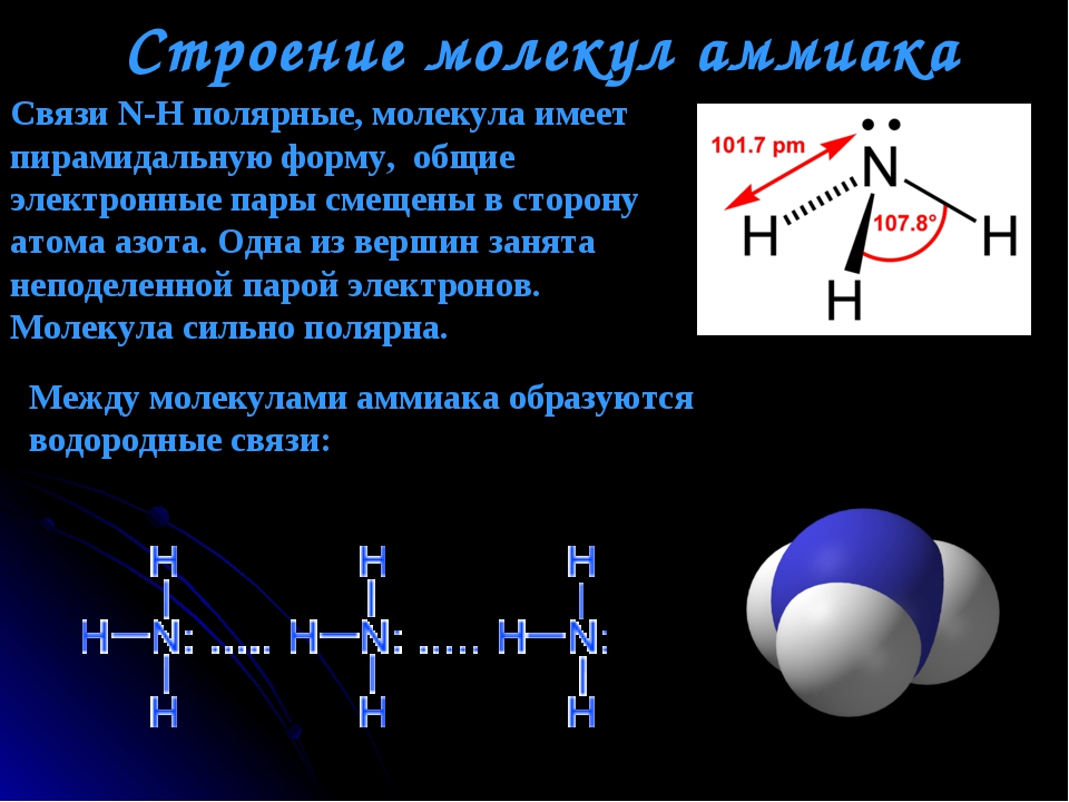 Строение молекул аммиака Между молекулами аммиака образуются водородные связи...