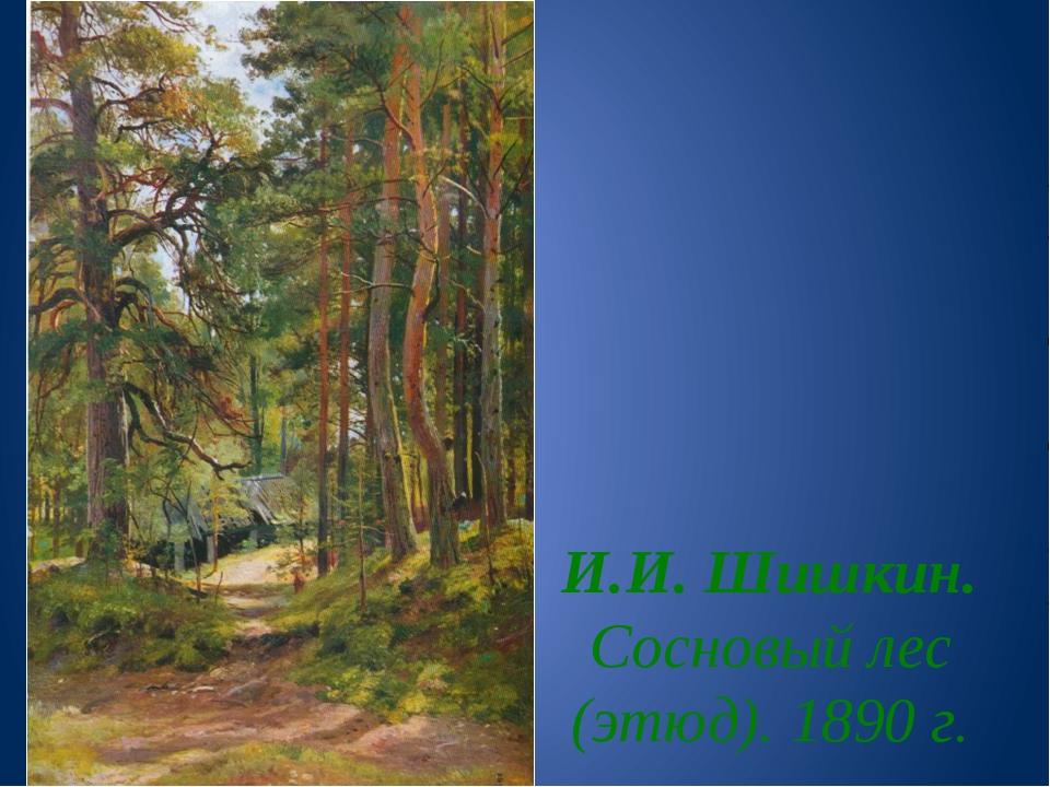 И.И. Шишкин. Сосновый лес (этюд). 1890 г.