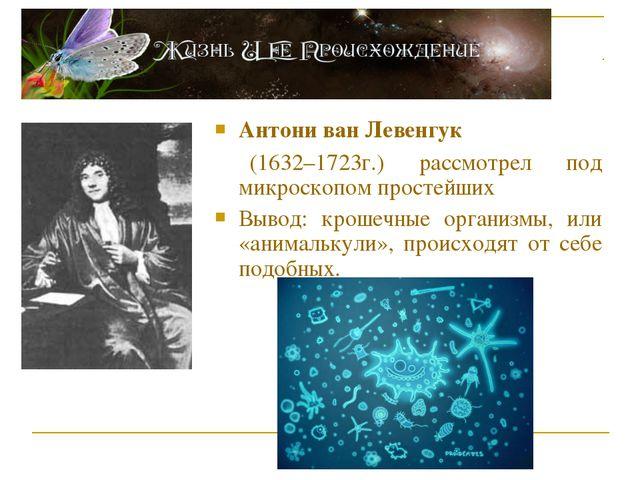 Антони ван Левенгук (1632–1723г.) рассмотрел под микроскопом простейших Вывод...