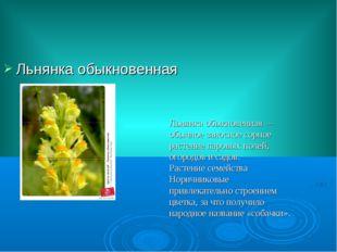 Льнянка обыкновенная Льнянка обыкновенная— обычное заносное сорное растение