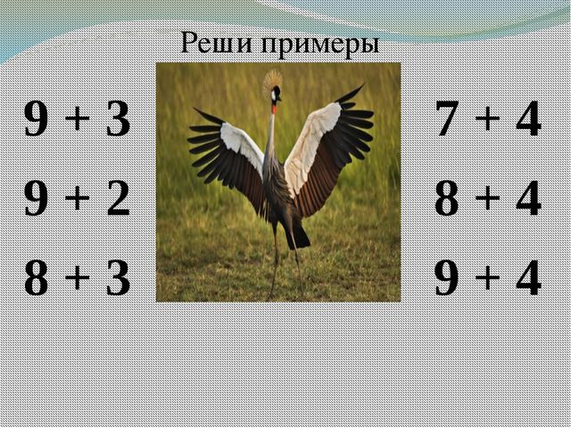 9 + 3 9 + 2 8 + 3 7 + 4 8 + 4 9 + 4 Реши примеры