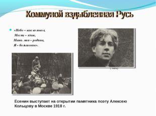 «Небо – как колокол, Месяц – язык, Мать моя – родина, Я – большевик». Есенин