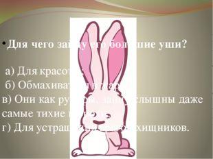 Для чего зайцу его большие уши? а) Для красоты; б) Обмахиваться в жару; в) Он