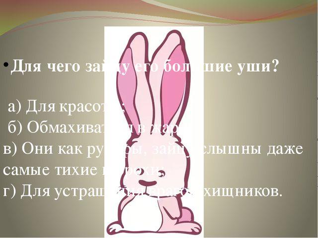 Для чего зайцу его большие уши? а) Для красоты; б) Обмахиваться в жару; в) Он...